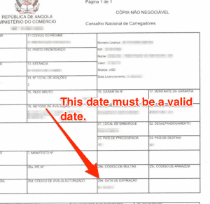 A sample of the DU document with an arrow pointing and saying 'This date must be a valid date.'